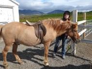 Móðir með hestur