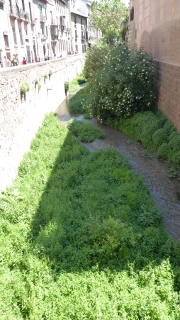 The Rio Darro wends its way down from the Alhambra....